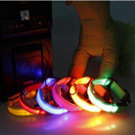 Flashing-light Dog Collar, Waterproof. USB Recharge. Night Safety.